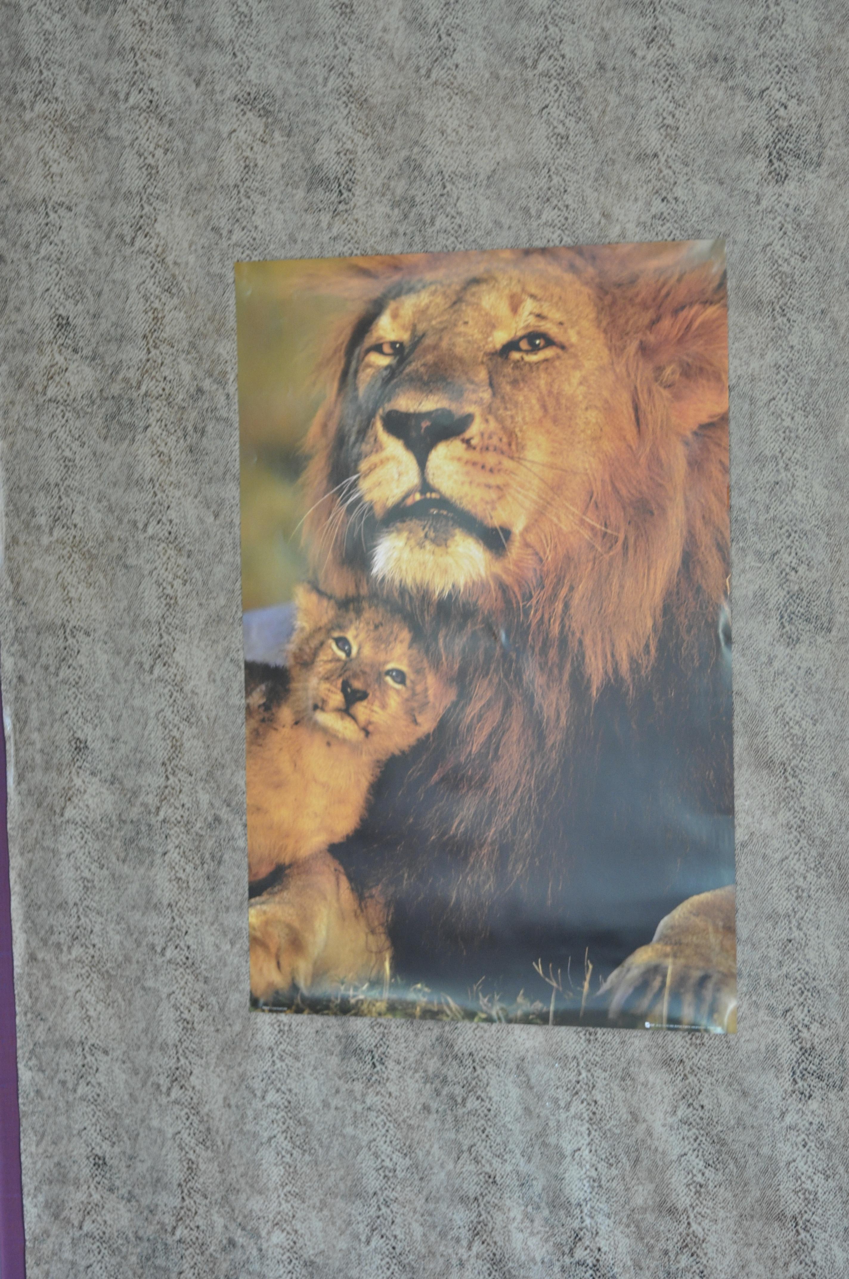 safari_DSC_1093